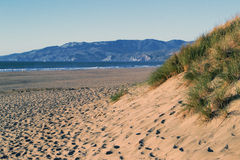 海洋海滩,旧金山,加利福尼亚 库存图片
