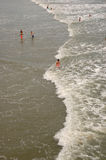 海洋游泳者 库存图片
