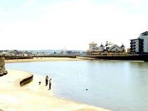 海洋湖&海滩,威斯顿超级母马 库存图片