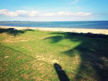 海滩火山的夏威夷 库存图片