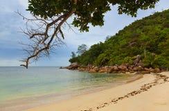海滩热带的塞舌尔群岛 免版税图库摄影