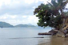 海洋热带风景 在岸的结构树 免版税图库摄影