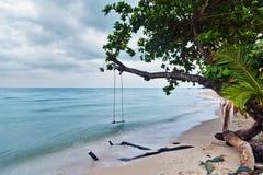 海滩王国沙子摇摆热带泰国的结构树 免版税库存照片