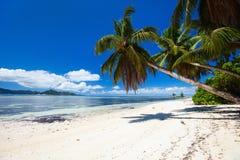 海滩理想的塞舌尔群岛 库存图片
