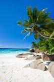 海滩理想的塞舌尔群岛 免版税库存图片