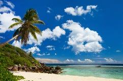 海滩理想的塞舌尔群岛 图库摄影