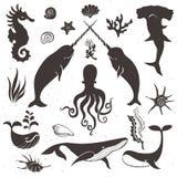 海洋生活,海生动物 葡萄酒手拉的元素 免版税库存照片