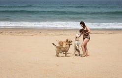 海滨的可爱的妇女 库存图片