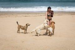 海滨的可爱的妇女 库存照片