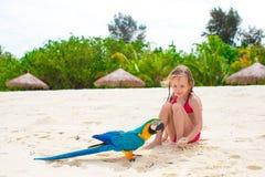 海滩的可爱的小女孩与五颜六色的鹦鹉 免版税库存图片