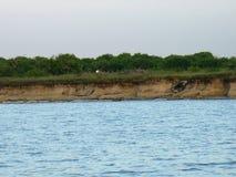 海滩的图片在巴芬湾,得克萨斯的 免版税库存照片