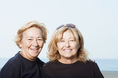 海滩的姐妹 库存照片