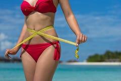 海滩的性感的妇女在有措施磁带的比基尼泳装 作为背景诱饵概念美元灰色吊异常分支 库存照片