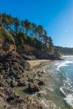 海滩的某一风景看法在Heceta头灯塔状态Sc的 免版税库存图片
