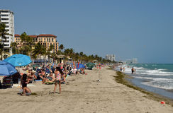 海滩的游人在好莱坞佛罗里达 免版税库存图片