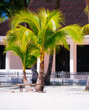 海滩的热带房子bantayan海岛,圣塔菲菲律宾, 08 11 2016年 图库摄影