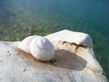海滩的(32)蜗牛房子 免版税库存图片