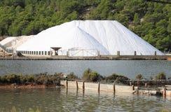 海洋盐产品 免版税库存照片