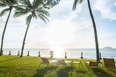 海滩睡椅在观看日落的棕榈树下 库存照片
