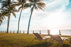海滩睡椅在观看日落的棕榈树下 免版税库存照片