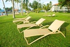 海滩睡椅在观看日落的棕榈树下 图库摄影