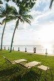 海滩睡椅在观看日落的棕榈树下 免版税库存图片