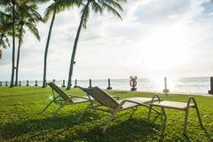 海滩睡椅在观看日落的棕榈树下 免版税图库摄影