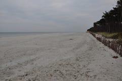 海滩秋天波罗的海 库存图片