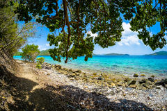 海滩美丽的加勒比 图库摄影