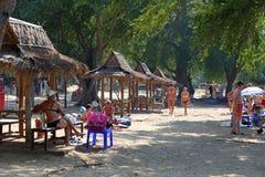 海滩美丽的棕榈树 库存照片