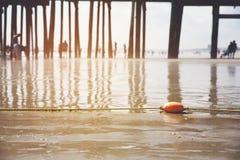 海滩老果树园 库存照片