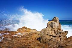 海洋背景水下的海洋桌面背景浇灌背景海滩背景海洋日落背景水中 免版税图库摄影