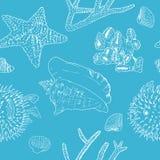 海洋背景 在蓝色的白色剪影 贝壳、珊瑚和海星 库存照片