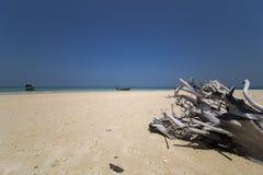海滩胜地 免版税库存图片