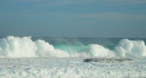 海绿色海洋逃命 库存照片