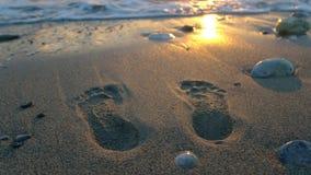 海滩英尺打印沙子夏天跟踪假期 免版税库存照片