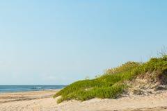 海滩草覆盖物在外面银行的沙丘 免版税图库摄影