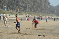 海滩蟋蟀 库存照片