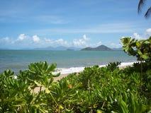 海滩视图,棕榈小海湾,澳大利亚 免版税库存图片