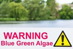 海藻警告 免版税库存图片