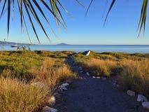 海滩路径 库存图片