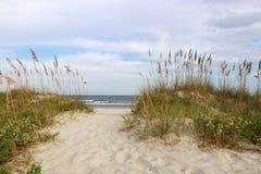 海滩路径 免版税库存照片