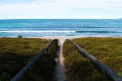 海滩通入 库存照片