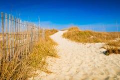 海滩道路 免版税库存图片