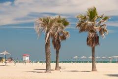 海滩里米尼 免版税库存照片