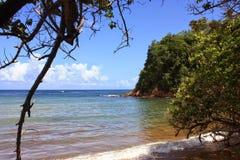 海滩马提尼克岛天空太阳和海 图库摄影