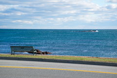 海洋驱动纽波特 库存照片