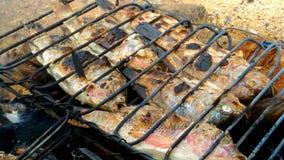 海滩鱼烤 库存照片