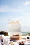 海滩鱼 免版税库存照片