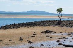 1770海滩 免版税图库摄影